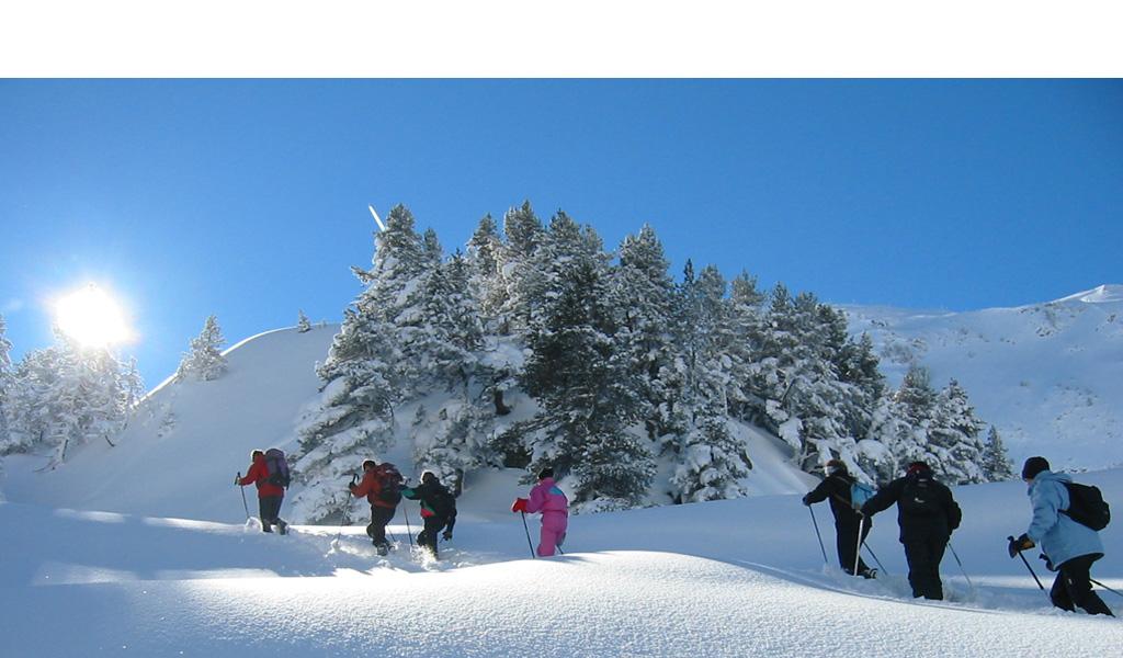 Ski in the Vosges